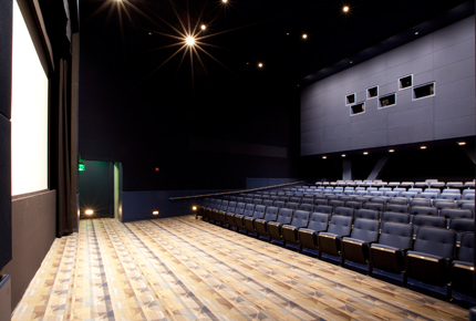 Bright Family Screening Room